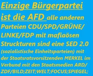 Bürgerpartei AfD
